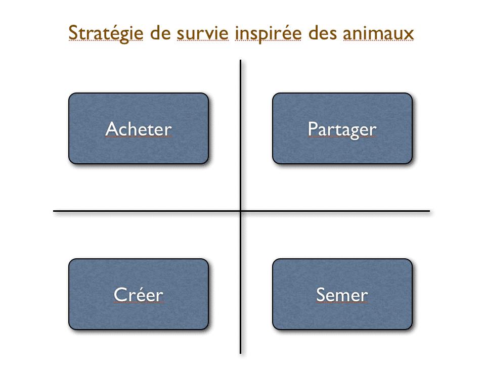 Stratégie de survie pour entreprise