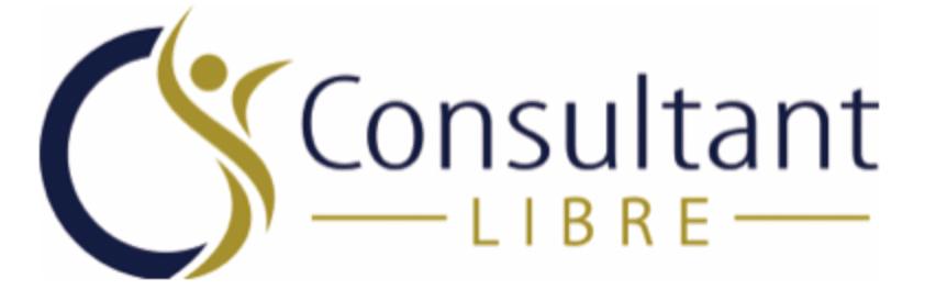 logo consultant libre